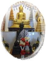ข้อมูลสรรพคุณยาสมุนไพรไทย